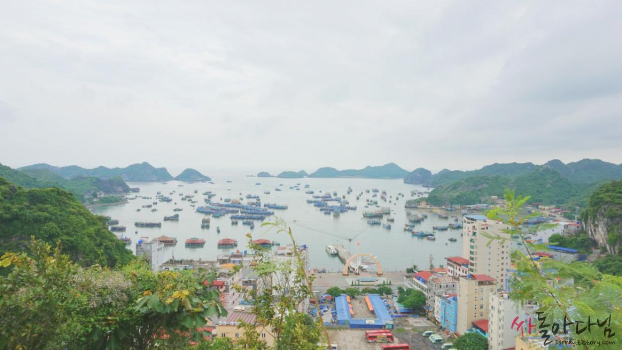 베트남 깟바 여행: 깟바 전망대에 올라 풍경 감상하기