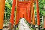 네즈신사 (根津神社)