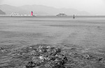 여수 동백섬