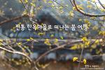 산청 남사예담촌, 한국의 미를 간직한 아름다운 마을