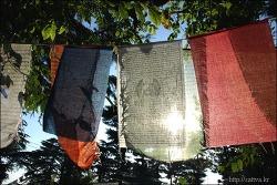 아티샤-티벳,일상의 기도문