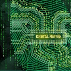 디지털 네이티브 담론에 대한 회의적 시각