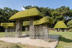 오키나와, 비오스노오카 자연식물원