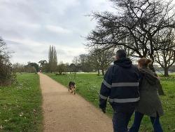 공원에 가득한 활기가 전하는 영국의 봄소식 (2)