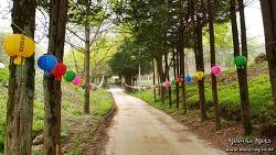 공주 가볼만한곳, 자연과 하나된 전통산사의 모습 마곡사