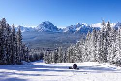 캐나다 밴프 스키여행, 한 폭의 그림 같았던 레이크 루이스 스키장 Lake Louise Ski Resort