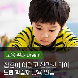 집중이 어렵고 산만한 아이, '느린 학습자' 양육 방법