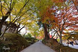 일본 여행 미야기현 동북지역 여행 프롤로그