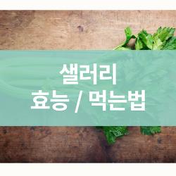 샐러리 효능 / 다이어트 식으로 먹는법