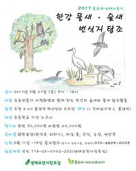 [회원나들이] 한강 물새/숲새 번식지 탐조