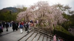 오사카여행 사진2 2017.0419-0422