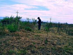 [영농일기] 제초작업 - 예초기 작업으로 한결 깨끗해진 밭