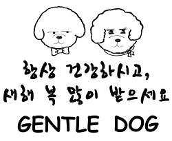 [인천 청라 가위컷 전문 젠틀독] 새해 인사 올립니다^^