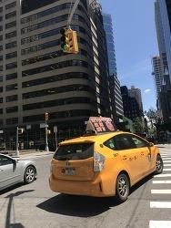 [#난생처음 뉴욕여행 여섯째날] #2 맨하탄 센트럴파크 메트로폴리탄 미술관  metmuseum.org에서 뉴욕을 만나다.