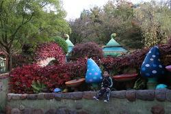 가을 품은 이솝빌리지에서~~ 내 아이 가을가을한 사진 찍어주기!
