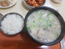창원 돼지국밥 맛집 저녁에 먹은 진보돼지국밥