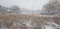 2017년 보라매공원의 눈 내리는 겨울풍경
