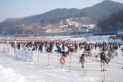 홍천 인삼송어축제 방문기