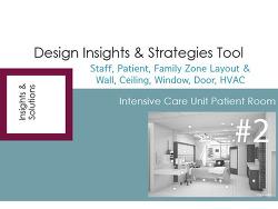 Design Insights &Strategies Tool #2-2
