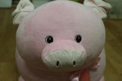 코스트코 인형의자 핑크돼지~! 귀여워서 샀다 ^^