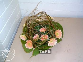 ▣ TAFE 학생 꽃작품 보기