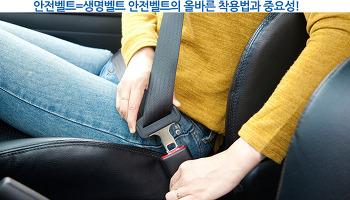 안전벨트=생명벨트 안전벨트의 올바른 착용법과 중요성!