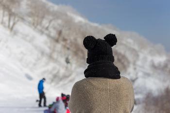 홋카이도 여행, 홋카이도의 스키장에서 썰매를, 호시노 리조트 토마무