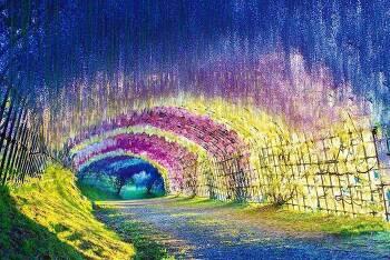동화속에 나올듯한 자연 터널