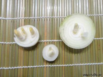 요리후 남은 양파의 놀라운 생명력