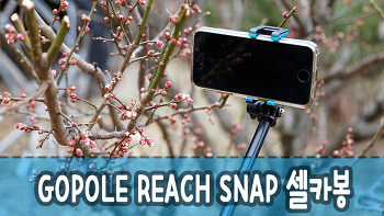GOPOLE REACH SNAP 셀카봉