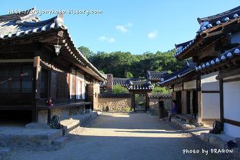봉화 소강고택, 춘양목으로 지어진 전통가옥