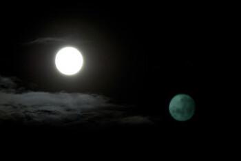 1984년의 두 개의 달- 유토피아와 디스토피아, 혹은 폭력과 사랑