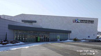 강화도 아이와 가볼 만한 곳, 강화자연사박물관