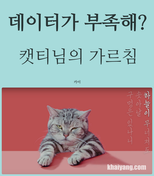 KT 데이터가 부족해? 고양이 캣티님이 알려주는 지혜