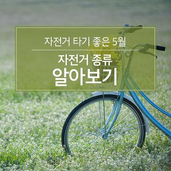 자전거 타기 좋은 5월, 자전거 종류 알아보기