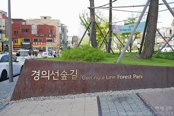 [홍대/연남동] 경의선숲길 (Gyeongui Line Forest Park)