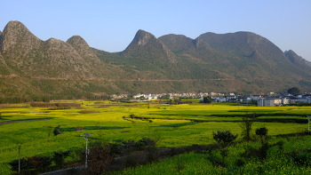 WANFENGLIN, CHINA (완펑린, 중국)