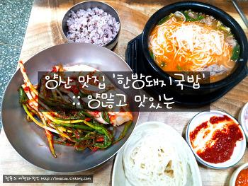 양산 맛집 '한방돼지국밥' :: 양많고 맛있는