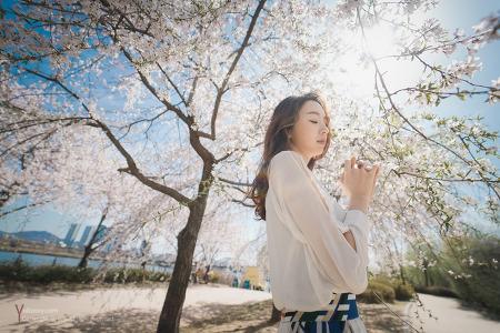 선유도공원 벚꽃나들이 2017년 4월10일