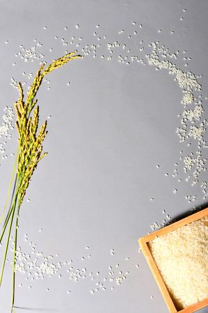 [기고]첫걸음 뗀 쌀 가공식품에 많은 관심을