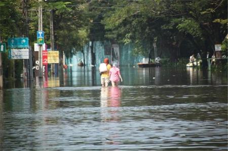 """해리의 """"태국 이야기""""(9) 태국 올해는 홍수 걱정 없을까?"""