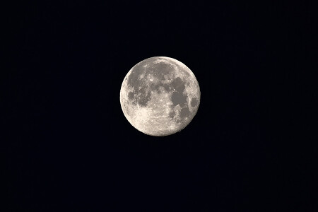 정월 보름달