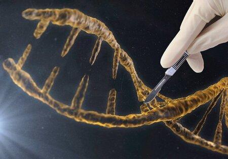크리스퍼 유전자 가위는 어떻게 개발 되었을까