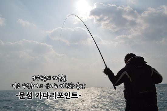 한겨울 제주도 벵에돔 낚시 조행기 -문섬 가다리포인트-