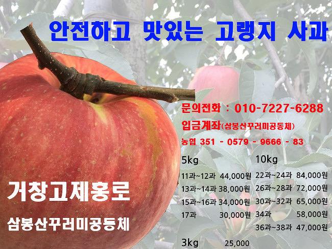 [거창사과] 거창고제홍로 사과를 팝니다.