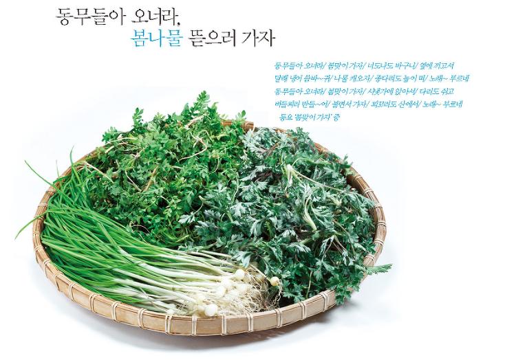 [Senior 골든라이프-41] 동무들아 오너라, 봄 나물 뜯으러 가자 GOLD & WISE 3월호
