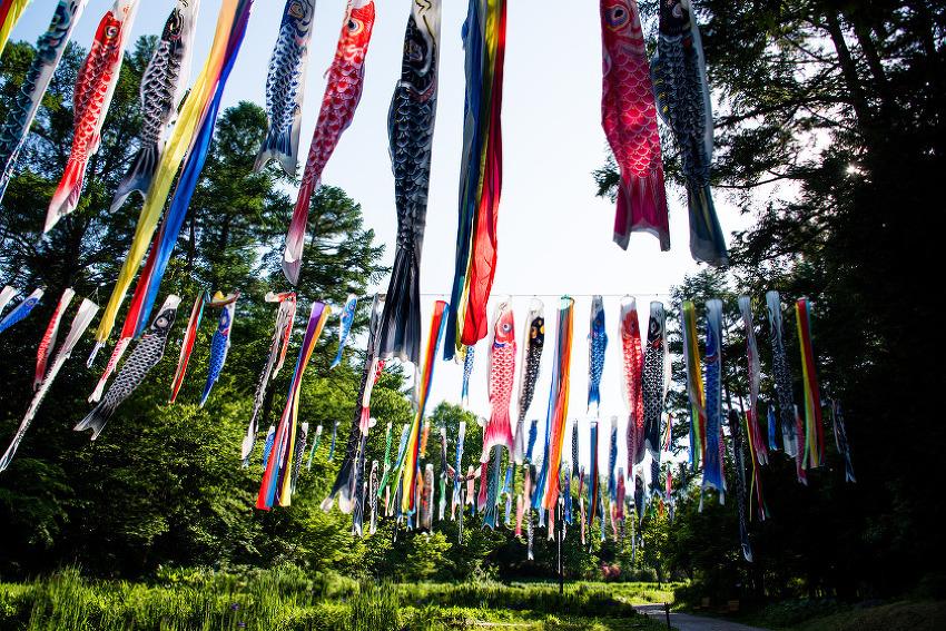 일본여행 - 국영 알프스 아즈미노공원 아이들과 함께 가면 좋습니다.