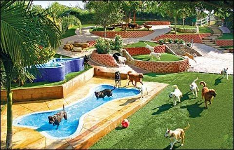 Outdoor - Garden furniture ideas fun good taste ...