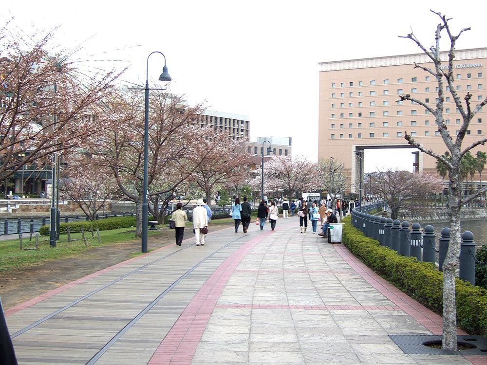일본여행 - 다음 이야기 : 141C4A4C513CB8B11045F5