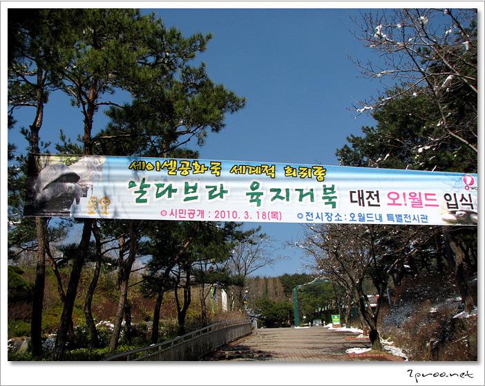대전 오월드 동물원